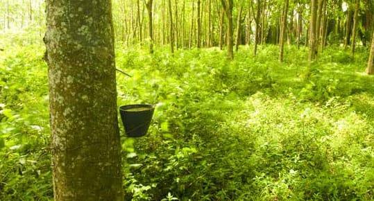 Comment limiter l'impact environnemental de sa literie ?