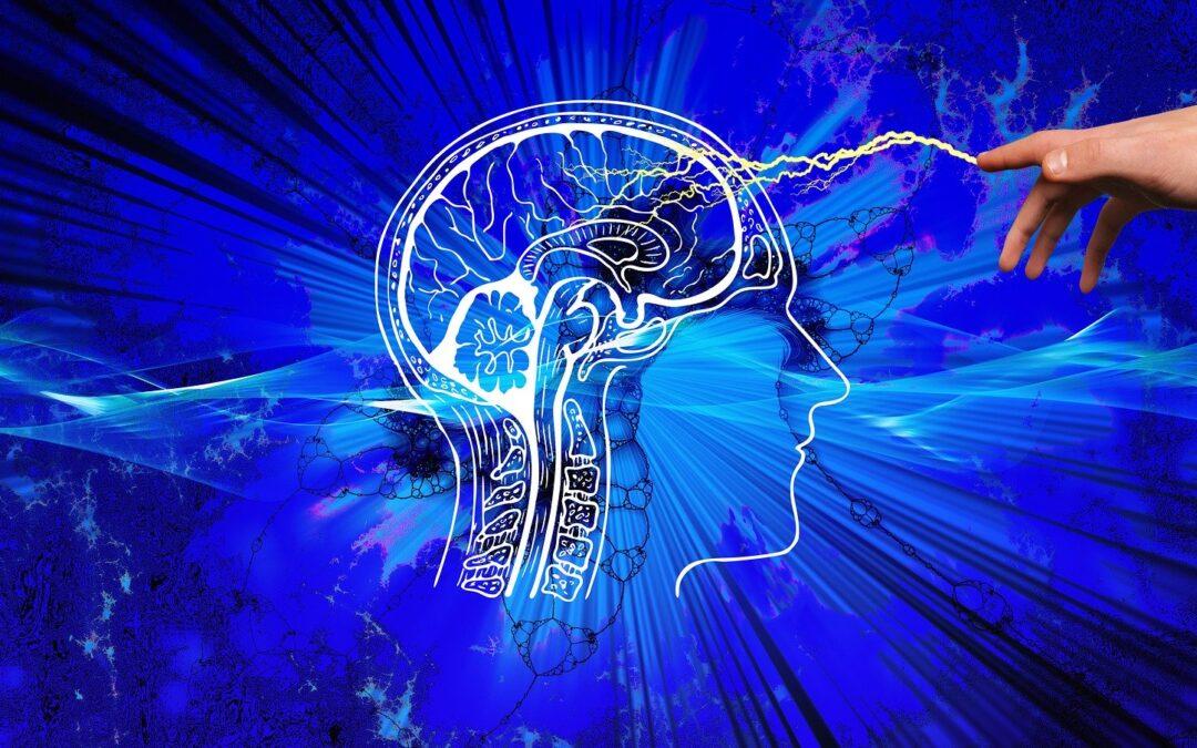 Votre cerveau se « nettoie » pendant votre sommeil