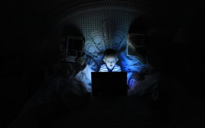 Punaise de lit : le fléau domestique